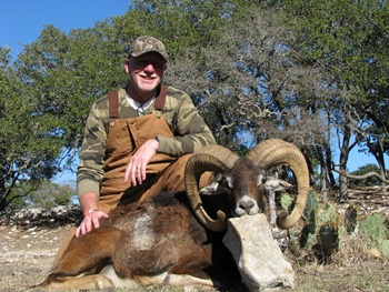 European Mouflon Hunt
