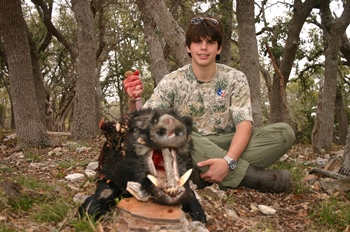 Texas Hog Hunt with Dogs