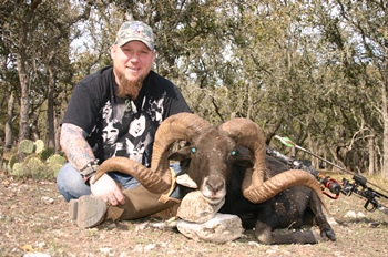 Black Hawaiian Ram Bow Hunt