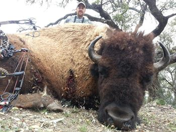 Buffalo Bow Hunt