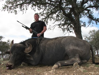 Water Buffalo Hunts