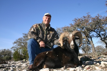 Black Hawaiian Ram Hunt