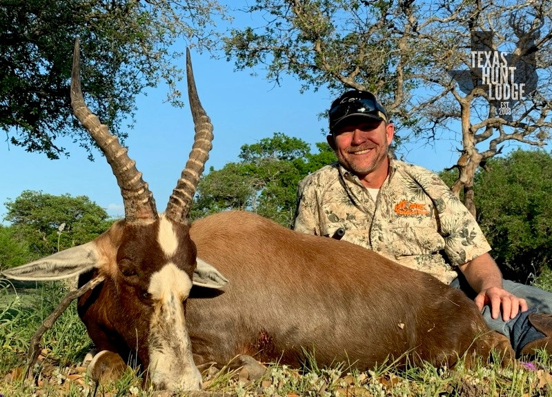 Texas Blesbok Hunt