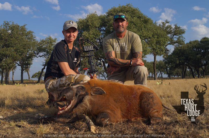 Red River Hog Hunting