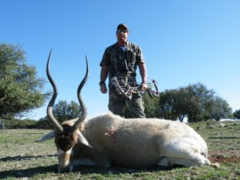 Addax Bow Hunt