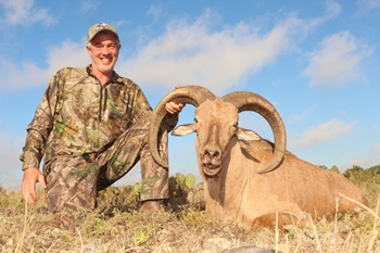 Trophy Barbary Sheep Hunt