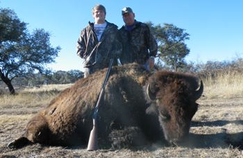 Archery Buffalo Hunt