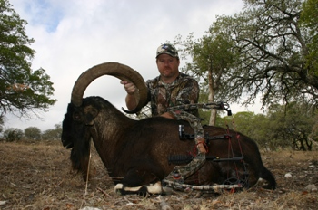 Persian Ibex Bow Hunt