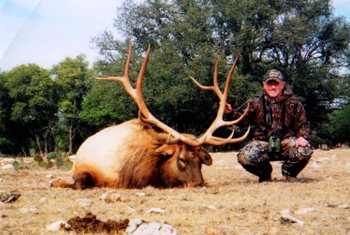 Gold Medal Elk Hunt