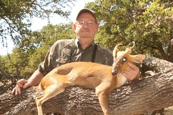 Texas Muntjac Hunts