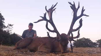 Monster Red Stag Rifle Hunt