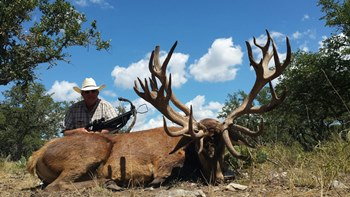 World Record Red Stag Crossbow Hunt