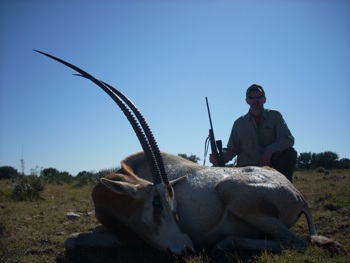 Scimitar Horned Oryx Hunt