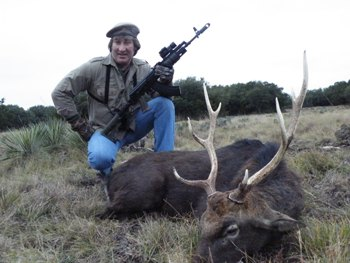 Japanese Sika Deer Hunt