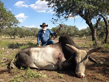 texas zebu hunting texas hunt lodge